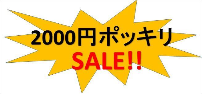 日頃のご愛顧に感謝して2000円ポッキリセール!!