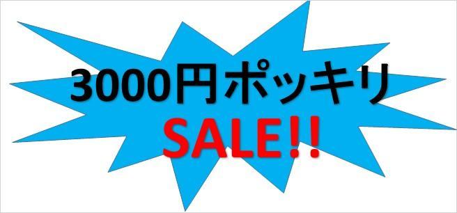 3000円ポッキリ!!